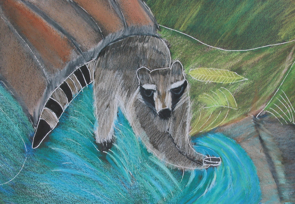 'Raccoon at the River' by Charles Unser